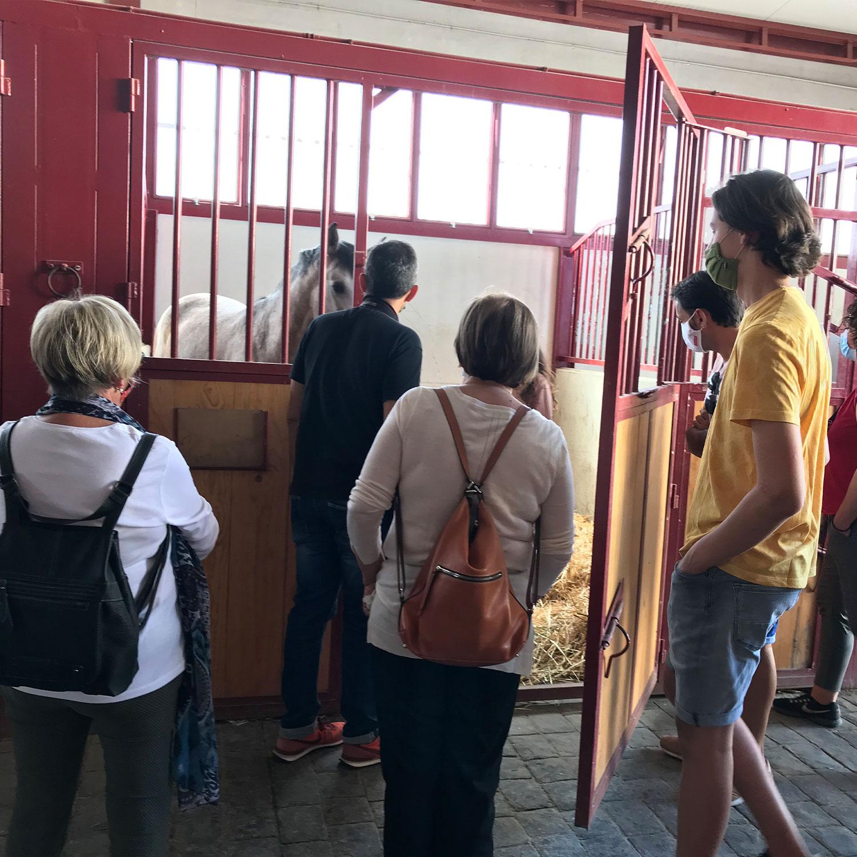 Visita a granja escuela
